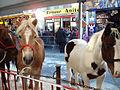 Sint-Lievens-Houtem Jaarmarkt 2.JPG