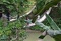 Sipatan Hanging bridge (9277731632).jpg