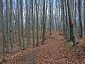 Smer Prielohy - panoramio.jpg