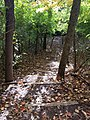 Smith Nature Park and Slyh Run (30474813231).jpg
