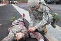 Soldiers participate in 2015 Sea Dragon NCO and Soldier of the Year Competition 150505-A-QQ532-360.jpg