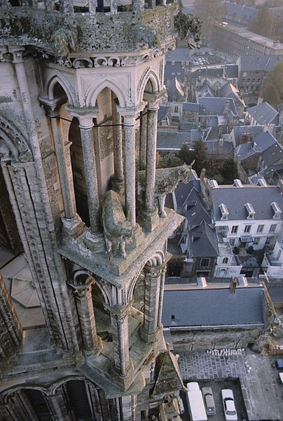 Gargoyles and stone oxen on southwest tower from northwest tower, Laon Cathedral