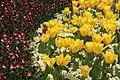 Spring in London (6967725192).jpg
