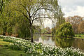 Spring in London (6970542288).jpg