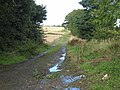 St Oswald's Way at Click'em in Farm - geograph.org.uk - 960125.jpg