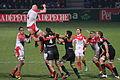 Stade toulousain VS Biarritz 01 2013 (31).JPG
