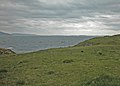 Staffa - geograph.org.uk - 859049.jpg