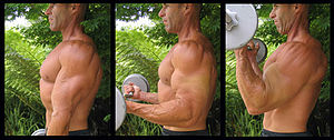 Standing barbell curls exercise for biceps