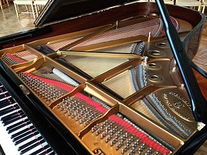 Interior of a Steinway grand piano showing the rim, plate, soundboard, bridges, keys, and strings