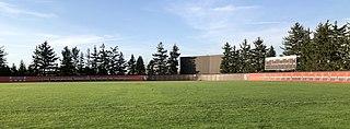 Steller Field