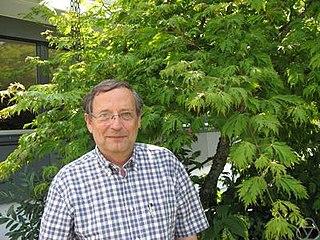 Stephen Lichtenbaum American mathematician
