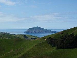 Lyall's wren - Stephens Island as seen from D'Urville Island
