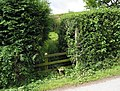 Stile at Cold Hill Farm - geograph.org.uk - 865720.jpg