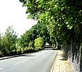 Stock Lane - geograph.org.uk - 909743.jpg