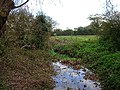 Stream near Norlington Gate Farm - geograph.org.uk - 77815.jpg
