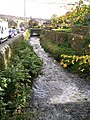 Stream running alongside Main Street - geograph.org.uk - 1016285.jpg