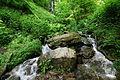 Sturzbach am Wasserfall Plästerlegge im Hochsauerlandkreis im Naturschutzgebiet Plästerlegge bei Wasserfall (zu Bestwig) 2.JPG