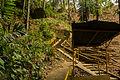 Sukorambi Botanical Garden, Jember, 2014-01-20 03.jpg