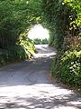 Sunken lane near Roke Manor - geograph.org.uk - 425931.jpg