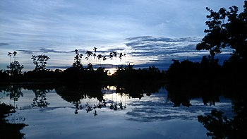 Sunset in a flood affected zone of Laokhowa Wildlife Sanctuary.jpg