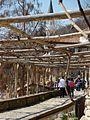 Sur le Domaine de la Reine Marie de Roumanie, Bulgarie, Balchik, 4.04.2010 - panoramio.jpg