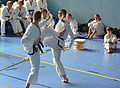 Taekwon-Do Landesmeisterschaft Uetersen 2014 06.jpg