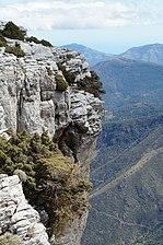 Tajo de la Caína - Sierra de las Nieves - Yunquera (Málaga).JPG