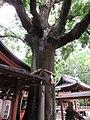 Takenobu Inari-jinja 017.jpg
