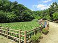 Tatsumigaoka-Park-1.jpg