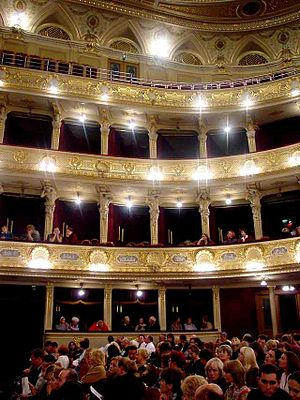 Lviv Theatre of Opera and Ballet - Lviv Opera, a view of the balconies from the floor.