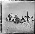 Teltleir med sleder hunder og annet utstyr, 1911 (7675743094).jpg