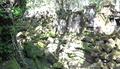 Temple de Beng Meala - Angkor 28.png