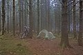 Tent and bicycles in the woods by Route de l'Ancienne Douane in Stavelot, Belgium (sensor is fogged, DSCF3621).jpg