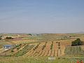 Terrenos de Camuñas.jpg