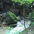 Tha Song Yang, Tha Song Yang District, Tak 63150, Thailand - panoramio.jpg