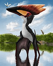 Illustration of a Thalassodromeus, with bat-like wings and a large, flat head