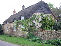 Thatched house with wisteria growing up the near end.