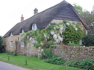 Ilton - A thatched house in Ilton with wisteria