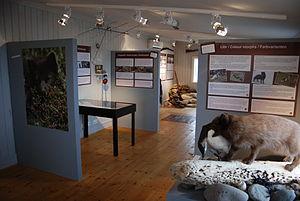 The Arctic Fox Center - The museum of the Arctic Fox Center.