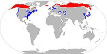 Greater Scaup range map