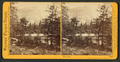 The Lake, Yosemite Valley, Mariposa County, Cal, by Watkins, Carleton E., 1829-1916 2.png