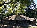 The Old Hummock Limestone Residue, Ipswich, Queensland 02.jpg