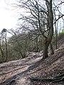 The Wealdway - geograph.org.uk - 1757571.jpg