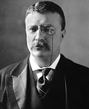 Theodore Roosevelt circa 1902