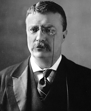 Progressive Party (United States, 1912) - Theodore Roosevelt was the founder of the Bull Moose Progressive Party and thus is often associated with the party.