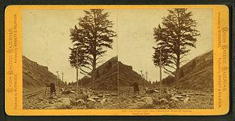 Thousand Mile Tree - Image: Thousand mile tree, 1000 miles West of Omaha, by Muybridge, Eadweard, 1830 1904
