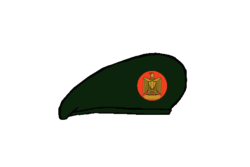 Thunderbolt brigadier Beret - Egyptian Army.png