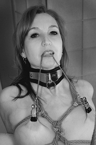 Nipple clamp - Nipple clamps with attached chain (the chain is being pulled for added pain)