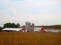 Toms Family Dairy Farm - panoramio.jpg