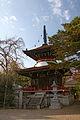 Tonanin Yoshino Nara03n4272.jpg